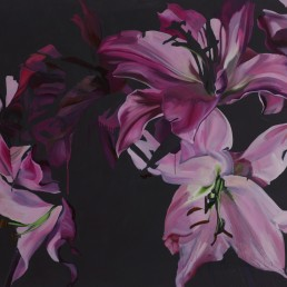 Lillies / 160X200 / Oil on Canvas / 2008