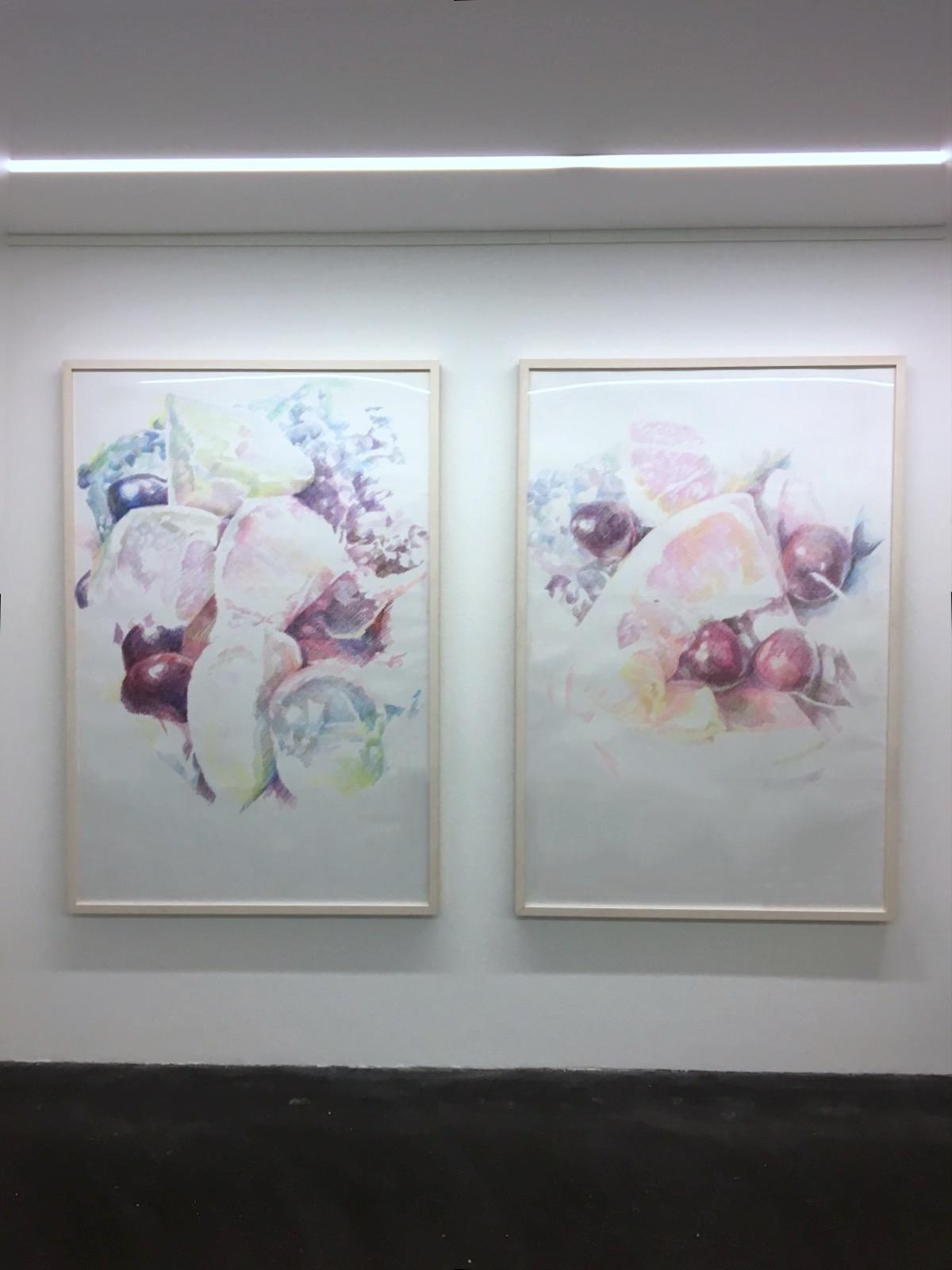 Installation View / Galerie.Z, 2016